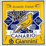 Jeu Guitare western mod. d'étude GIANNINI (GESW)
